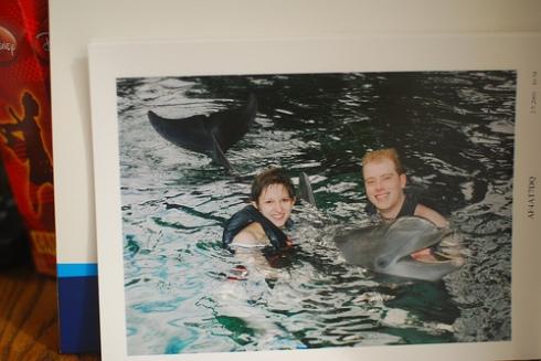 dolphinz